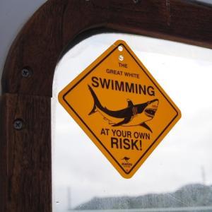人食いザメは存在するのか?