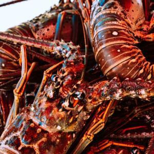 【台北魚市・上引水産】新鮮な海鮮が食べたい!アクセス抜群【セレブも集う】