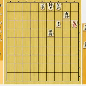初手に迷いそうな詰将棋~9手詰