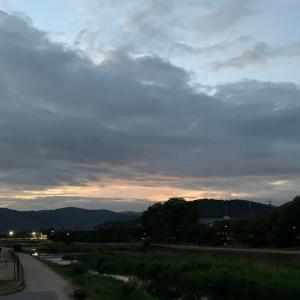 今日は曇りがちな一日でした。(五輪の日本代表凄い活躍してますねー)