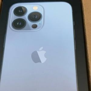 iPhone13 Pro あんど GoPro Hero 10 がとどきましたよ(晩ご飯はカレーうどん)