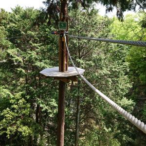 【冒険の森inおうじ】150mのジップラインに初挑戦!ツリートップアドベンチャーを楽しもう!!