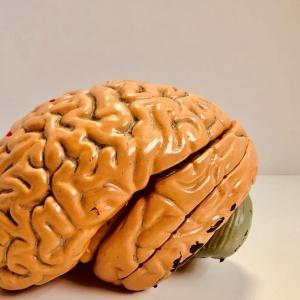 【思考停止】している人の8個の特徴と改善法。脳を習慣付けて前進させよう!