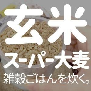雑穀あれこれ入り玄米ごはん