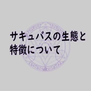 【Succubus】サキュバス