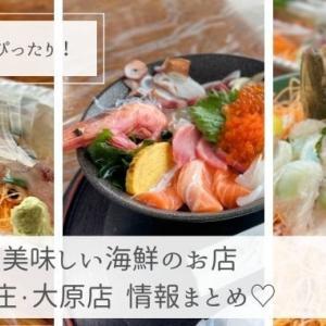 【糸島海沿い】海鮮のうんまいお店ならここ!魚庄・大原店(ランチ・ディナー紹介)