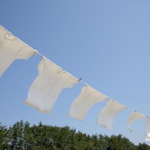 Tシャツを洗う頻度はどれくらいがいいの?長持ちする洗い方も紹介