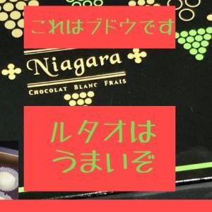 【北海道名店ルタオ】ナイアガラのおすすめレビュー!!