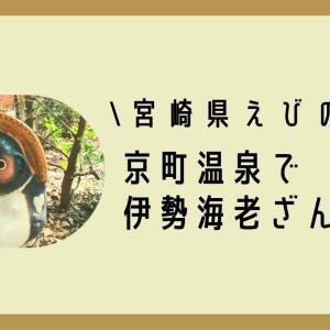 【十兵衛の宿】宮崎県えびの市にある京町温泉に行ってきた!伊勢海老づくしの夕食がたまらん♪