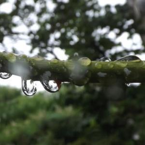 雨の日のお遊び