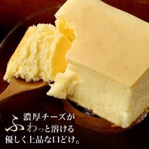 幻のチーズケーキ(長方形)約2~3名用【冷凍便】