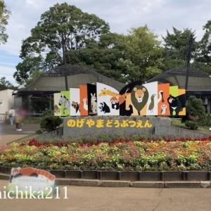 Visiting The Nogeyama Zoo with your kids! Easy access from Sakuragicho Station, Yokohama.