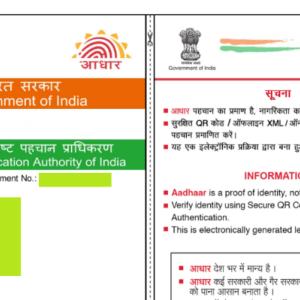 «インド現地採用情報» 10ヵ月かけて、アダール(Aadhaar)を作ることができた話