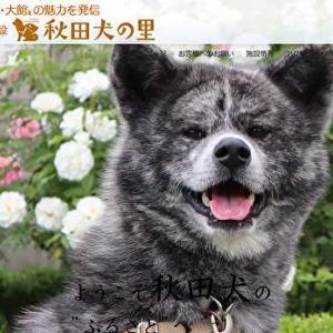 【無料で旅行】秋田犬に会いに秋田犬の里へ行こう!|Zoomでおうち観光