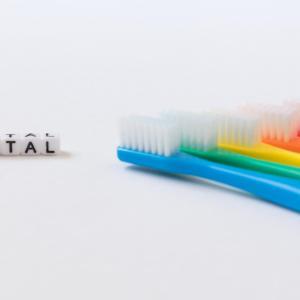 歯磨き上手です!