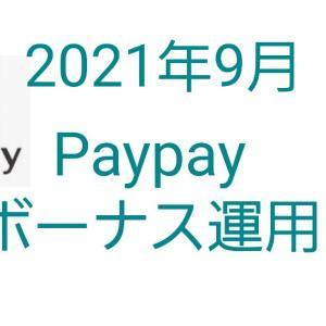 【9月】Paypayボーナス運用結果|12か月目