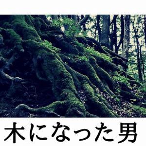 短編小説【木になった男】※個人的おすすめ小説