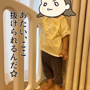 小梅、1歳4ヶ月♪出来るようになった事と梅の近況