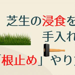 芝生の浸食防ぐ手入れ方法~「芝生の根止め」のやり方~