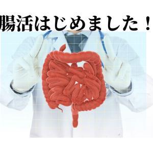 腸活はじめてます~おすすめのぬかづけ5選