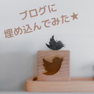 ブログにTwitterを貼りたくて!(Cocoonの場合)