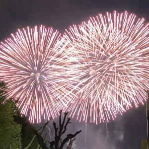 クリスマスの奇跡!名古屋港の夜空を飾るISOGAI花火劇場