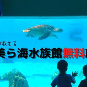 沖縄県民が教える【美ら海水族館】おすすめ無料エリア