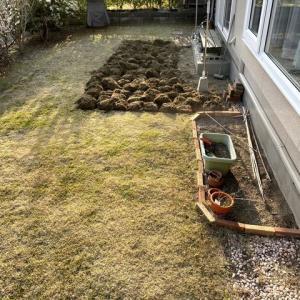 第?次お庭改造計画スタート