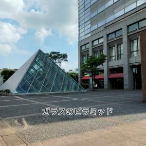 ガラスのピラミッド オープンカフェ 海鮮皿うどん そらちゃん不満顔 ハナトラノオ