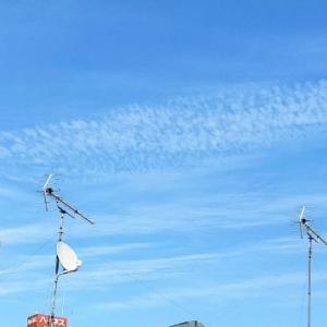 初秋の空 羊雲 ワンプレートモーニング そらのブルブル♪アワビとイカのお刺身 切り干し大根