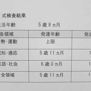 【5歳8か月】初めての新版K式発達検査/DQ103