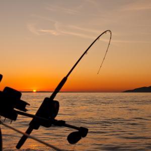 【釣行記】春の深日港へ穴釣り&アジング