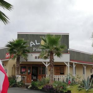 2周年キャンペーン中のアロハカフェパイナップル宝塚店でハワイ気分満載のランチを食べてきた
