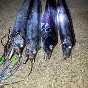 タチウオ(ショア)おすすめの釣り方