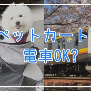 【失敗談】ペットカートは電車OK?犬とおでかけするルールと注意点