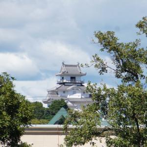 掛川城へ行ってきました。