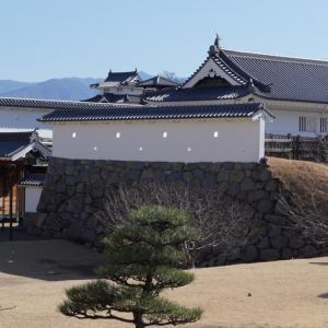 甲府城・武田神社へ行ってきました