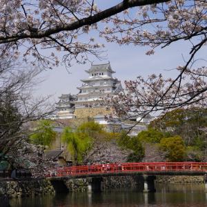 姫路城へ行ってきました