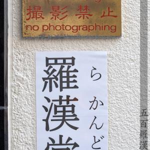 五百羅漢寺 五百羅漢像撮影会  - 彩19