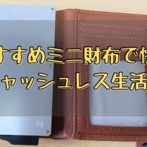 カードケース付きミニ財布を約6ヶ月使用した感想【キャッシュレス生活におすすめ】
