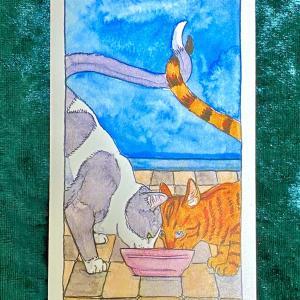 【カップの2】猫のタロット 今週の一枚