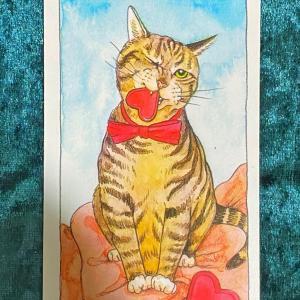 【ソードの】猫のタロット 今週の一枚