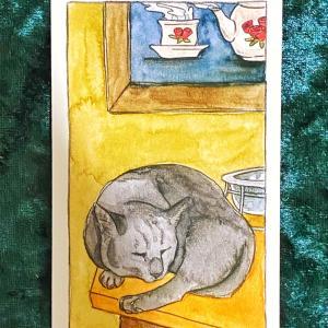 【カップのクイーン】猫のタロット 今週の一枚