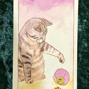今日の猫のタロット【ペンタクルの7】