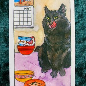 今日の猫のタロット【カップの5】