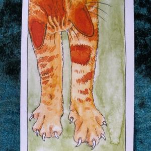 今日の猫のタロット【ソードの9】(逆位置)