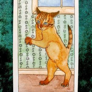今日の猫のタロット【ソードのペイジ】