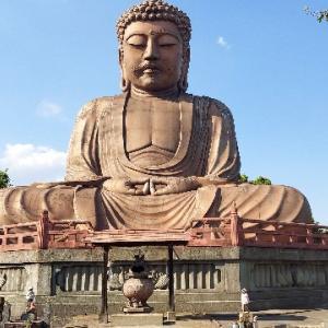 The 日本のお寺