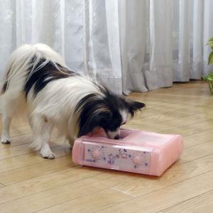 【犬の自動給餌器】おすすめランキング5選