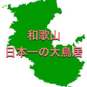【和歌山】日本一大きな鳥居は由緒正しきの神社と一緒に行くべき【ヒント:参拝順に注意!】